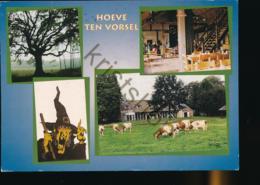 Bladel - Hoeve Ten Vorsel [AA47-5.026 - Sin Clasificación