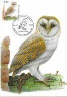 BUZIN Oiseau Chouette Effraie Cachet BRUXELLES Premier Jour 04/01/2010 Timbre Yvert 3964 Carte Signée Buzin - Maximum Cards