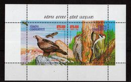 Turkey - Birds M/S , 2000, UMM - 1921-... República