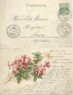 "AK  ""Blütenzweig""  Thierachern - Thun          1900 - Storia Postale"