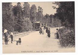 CPM TRAIN VOIR DOS 62 PARIS PLAGE Le Touquet  Arrêt Du Tram Tramway En Forêt Chien Caniche - Le Touquet