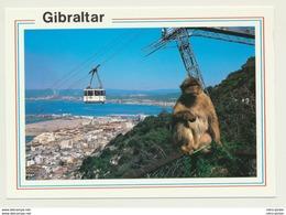 AK  Seilbahn Gibraltar - Funicular Railway