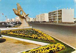 85 - Saint Jean De Monts - Les Oiseaux De Mer - Saint Jean De Monts