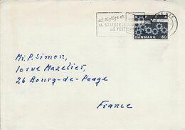 DANEMARK LETTRE POUR LA FRANCE 1967 - Lettere