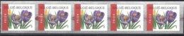 Cob  Timbres Rouleaux R106 A.Buzin : Fleurs Crocus Vernus ** - Francobolli In Bobina