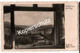 Aussicht Vom Hotel Rixi, Spitzberg-Böhmerwald 1940  (z6257) - Boehmen Und Maehren