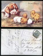 BUONA PASQUA  ILLUSTRATORE NORFINI - TIMBRO DI CENSURA DELLA REGIA NAVE NAPOLI - SPEDITA NEL 1913 (ILS5) - Altre Illustrazioni