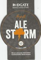 RUDGATE BREWERY  (YORK, ENGLAND) - ALE STORM - PUMP CLIP FRONT - Uithangborden