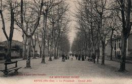 Revel (La Montagne Noire) - La Promenade, Grande Allée - Edition J.F.M. - Revel