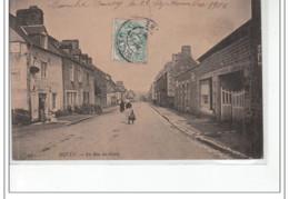 DUCEY - La Rue Du Génie - Très Bon état - Ducey
