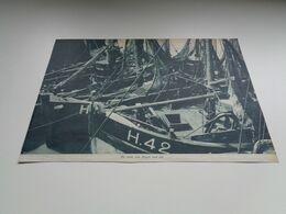 """Origineel Knipsel ( 2645 ) Uit Tijdschrift """"  De Stad """" 1936 :   Heyst   Heist Aan Zee - Old Paper"""