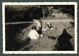 Galipettes Au Jardin Séance De Chatouilles Entre Enfants Ombre Du Photographe  - PHOTO Originale - Anonyme Personen