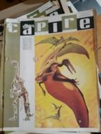 OLD ITALIAN MAGAZINE CAPIRE - 1966 COVER WITH PREHISTORIC ANIMALS DINOS SKELETON FOSSIL - Fossili