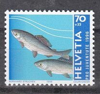 Tr_ Schweiz 1996 - Mi.Nr. 1598 - Postfrisch MNH - Tiere Animals Fische Fishes - Fische