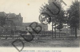 Postkaart-Carte Postale - MERKSPLAS Colonie - Drève De La Chapelle (B666) - Merksplas