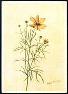 E0058 - F. Kniest Künstlerkarte - Sonnenauge - Erich Gutjahr Bildverlag Berlin - Plantas Medicinales