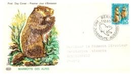 Thème Animaux - Rongeur - Suisse Document - Rodents