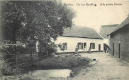 Belgique - Maasmechelen - Eysden - Op Het Heufkeg - A La Petite Ferme - Maasmechelen