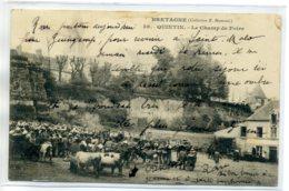 22 QUINTIN  Le Marché Aux Vaches Champ De Foire 1904 - 38 Hamonic    /D08-2017 - Quintin