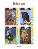 SIERRA LEONE 2020 - Birds Of Prey, Owl. Official Issue [SRL200315a] - Búhos, Lechuza