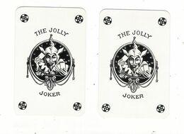 LOT  De  2  Cartes à Jouer  ( 2 JOKER ) /  Identiques Sur Le Devant Mais Différents : Dos Rouge + Dos Bleu - Playing Cards