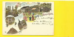 Gruss Aus VOGELSBERG Litho. () Allemagne - Vogelsbergkreis