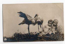 BEBES NUS * CIGOGNES *  CARTE PHOTO N° 449 - Baby's