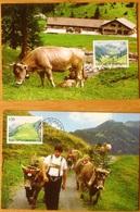 Liechtenstein 2005: Weide-Alpen Valüna & Gritsch Zu 1328-29 Mi 1385-86 Yv 1326-27 Auf MK 245 C+d EINZELN ISOLÉE SINGLE - Mucche