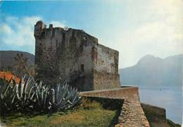 20 - Girolata - Le Golfe De Girolata - Fort Génois - CPM - Voir Scans Recto-Verso - Andere Gemeenten