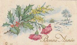974 - MIGNONETTE MIGNONNETTE BONNE ANNEE .HOUE OEILLETS MIMOSA PASSERELLE RUISSEAU OYSAGE ENNEIGE . FOX PARIS 227 - Anno Nuovo