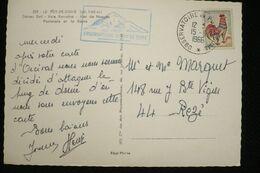 CP Cachet Observatoire Puy De Dome 15/6/1966 Sur Coq - Marcofilia (sobres)