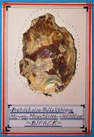 Préhistoire, Paléolithique Moyen, Moustérien, - 40000 Ans. BIFACE En Silex Taillé. Paleolithic. - Arqueología
