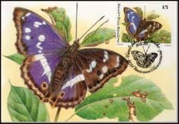 2504 - MK - Vlinders : Apatura Iris - 1991-2000
