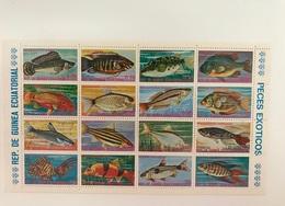 GUINÉE ÉQUATORIALE 1 Bloc 16 V Neuf Pesce Poisson Fish Pez Fische GUINEA ECUATORIAL - Pesci