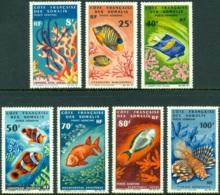 SOMALI COAST 1966 MARINE LIFE AIR MAILS** (MNH) - Unused Stamps