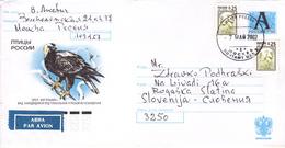 SSSR / RUSSIA, Birds , Birds Of Prey, Cranes - 1992-.... Federation