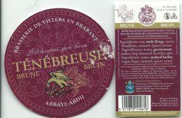 étiquette Décollée Ténébreuse Brune Brasserie De Villers - Beer
