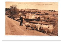 LA VAUCLUSE PITTORESQUE : Mouton Sur La Route Du Mont Ventoux - Tres Bon état - Sonstige Gemeinden
