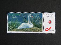Buzin Mystamp Zittende Zwaan - 1985-.. Oiseaux (Buzin)