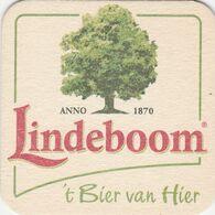 BEERMAT - LINDEBOOM BIERBROUWERIJ  (LIMBURG, HOLLAND) - Sotto-boccale