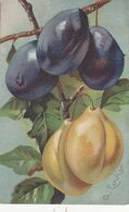 Cartolina -  Prugne. - Flores, Plantas & Arboles