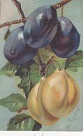 Cartolina -  Prugne. - Flowers, Plants & Trees