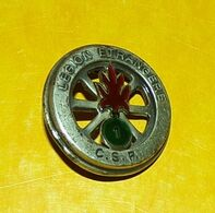 LEGION : 1° R.E.I, C.S.P (CRTRLE) Légion Etrangère En Relief, Résine, Guilloché, FABRICANT DRAGO PARIS,HOMOLOGATION SANS - Esercito