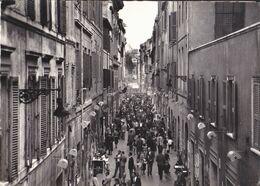 Roma - Via Margutta - Animata - Panoramic Views