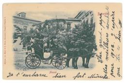 RO 75 - 15942 BUCURESTI, Muscal, Romania, Litho - Old Postcard - Used - 1901 - Rumania