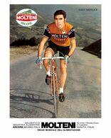 PHOTO RIGIDE, GRAND CALITE;EDDY MERCKX 1973 FORMAT 17 X 24 - Ciclismo