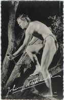 Artiste  Carte   Johnny Weissmuller - Entertainers