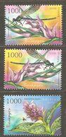 Belarus: Full Set Of 3 Mint Stamps, Flowers - Orchids, 2006, Mi#644-646, MNH - Belarus