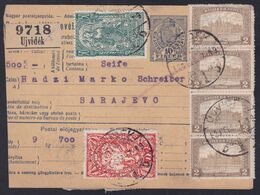SHS, Ujvidek (Novi Sad), Parcel Card, Mixed Franking With Chainbreakers, February 1920, Few Stamps With Faults - 1919-1929 Kingdom Of Serbs, Croats And Slovenes