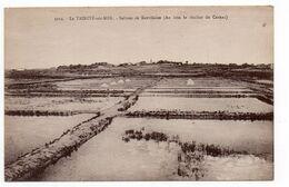 56 - LA TRINITÉ Sur MER - Salines De Kervilaine (Au Loin Le Clocher De Carnac) (0172) - La Trinite Sur Mer